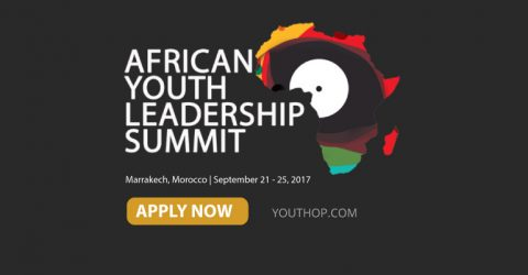 Call for Participants: African Youth Leadership Summit 2017 in Morocco