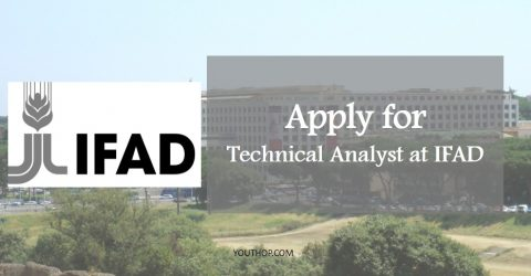 Technical Analyst Position at the International Fund for Agricultural Development in Italy