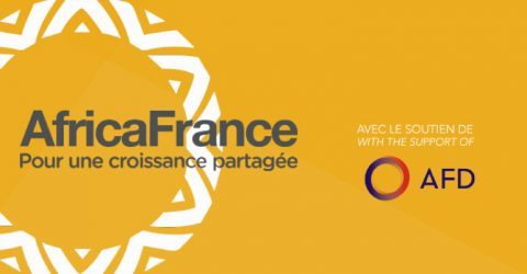 Africa France Young Leaders Programme 2017 in France