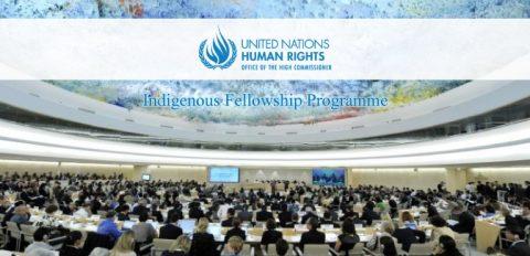 UN-OHCHR Indigenous Fellowship Programme 2018