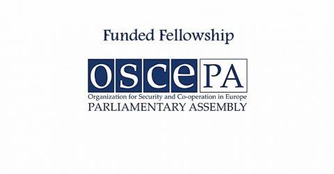 OSCE Research Fellowship 2017