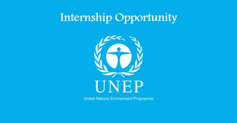 Internship Opportunity at UNEP in Geneva