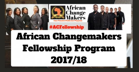 African Changemakers Fellowship Program 2017-2018