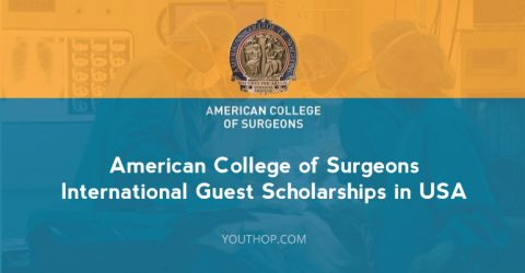 American College of Surgeons International Guest Scholarships 2017 in USA