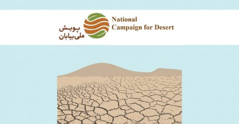 Green Idea Contest for World Day to Combat Desertification 2017