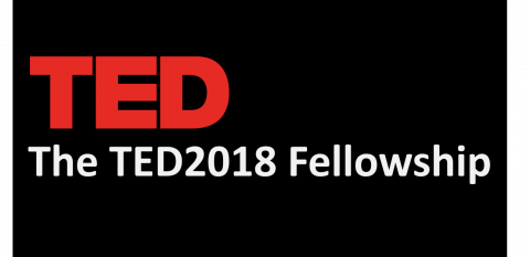 The TED2018 Fellowship