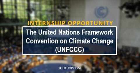 Internship at The United Nations Framework Convention on Climate Change (UNFCCC)