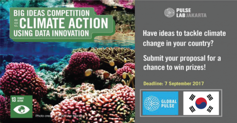 Big Ideas Competition 2017 by UN Global Pulse and The Government of the Republic of Korea