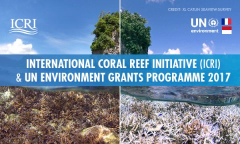 International Coral Reef Initiative (ICRI) and UN Environment Grants Programme 2017