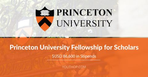 Princeton University Fellowship for Scholars 2018/2021