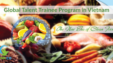 Global Talent Trainee Program in Vietnam