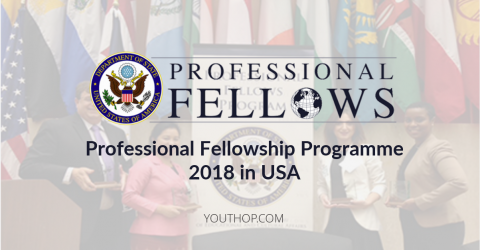 Professional Fellowship Programme 2018 in USA for The African