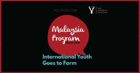 Scholarship Program at IYGF Malaysia