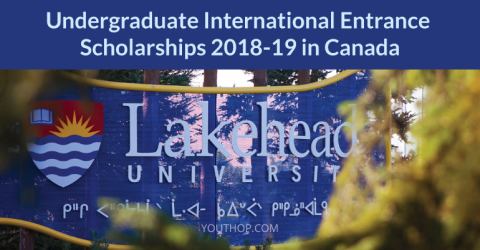 Undergraduate International Entrance Scholarships 2018-19