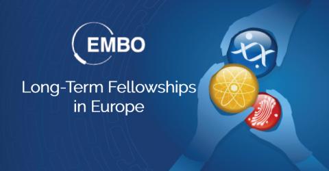 EMBO Long-Term Fellowships in Europe