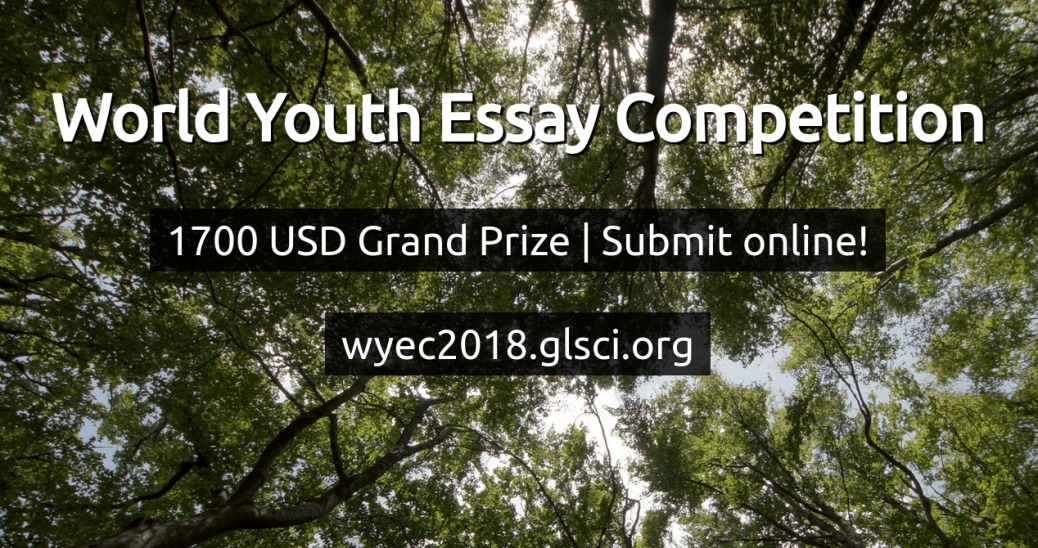 world essay competitions 2013