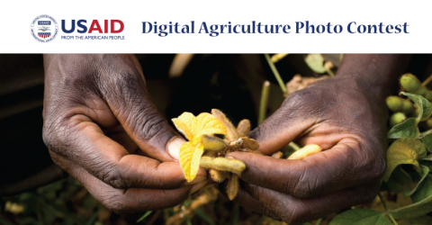 Digital Agriculture Photo Contest by USAID