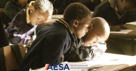 The Science and Language Mobility Scheme Africa