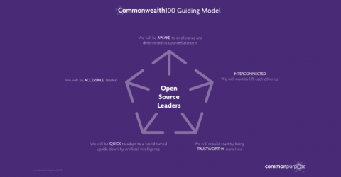Commonwealth100 – Fully Funded Online Leadership Course