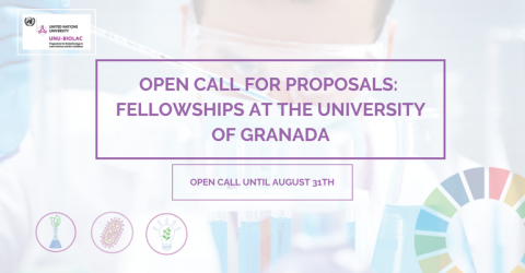 Fully Funded Fellowships at the University of Granada