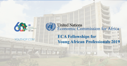 ECA Fellowships for Young African Professionals 2019