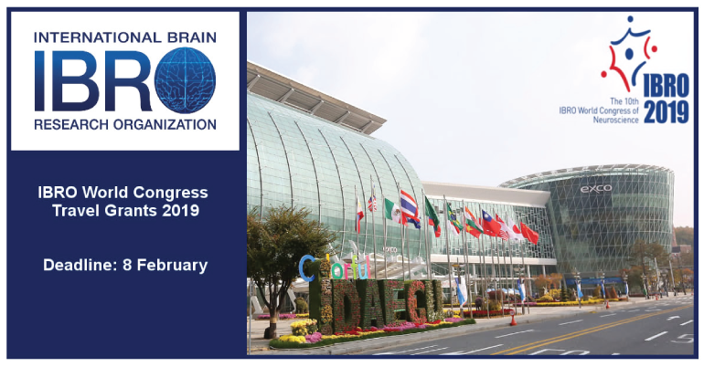 IBRO World Congress Travel Grants 2019 in South Korea