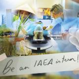 International-Atomic-Energy-Agency-Innovation-Internship-2019-in-Austria
