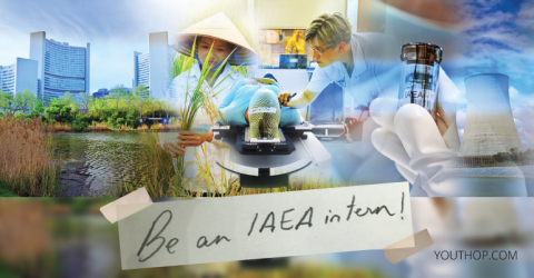 International Atomic Energy Agency Innovation Internship 2019 in Austria