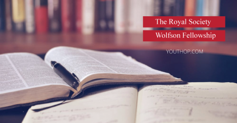 The Royal Society Wolfson Fellowship 2019 in UK