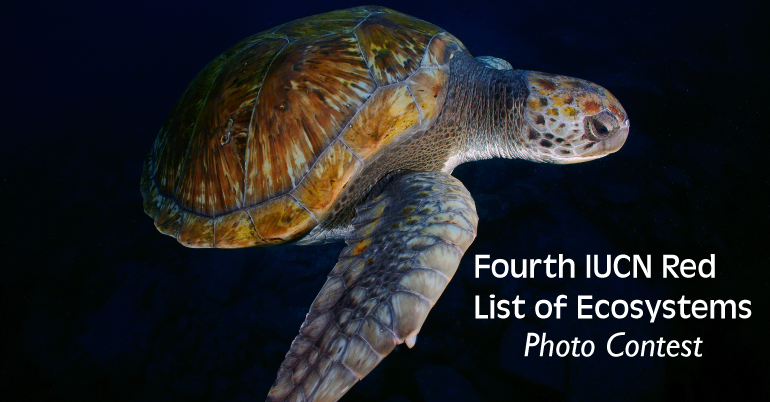 2019 Fourth IUCN Red List of Ecosystems Photo Contest in France