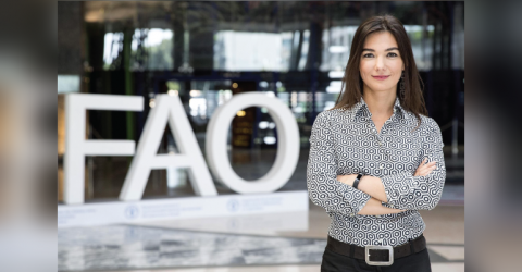 2019 Internship Program at FAO HQ in Italy- Apply Now