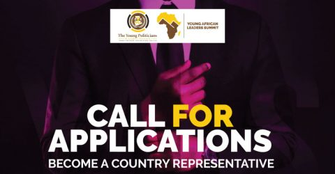 Young Africa Leaders Summit 2019: Apply To Be Country Representative