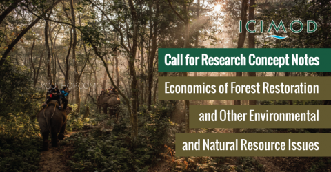 Call for Concept Notes: Economics of Forest Restoration and Environmental Issues