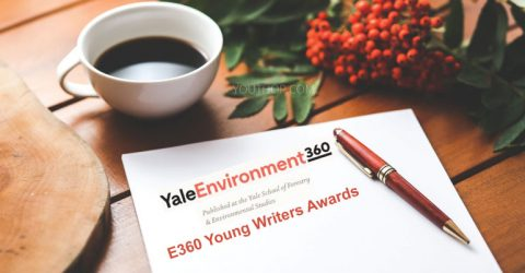 Entries Invited for the First Annual E360 Young Writers Awards