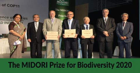 Nominations Open for The MIDORI Prize for Biodiversity 2020 in Tokyo