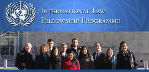 United Nations International Law Fellowship Programme 2020 in Netherlands