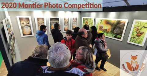 2020 Montier Photo Competition in France