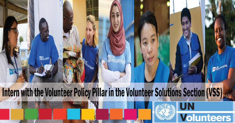 Intern with the Volunteer Policy Pillar