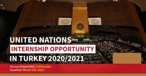 United Nations Internship 2020/2021 in Gebze, Turkey