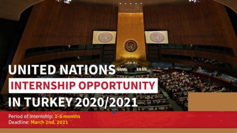 United Nations Internship 2020/2021 in Gebze, Turkey