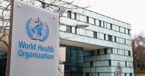 World Health Organization (WHO) Paid Internship in Geneva, Switzerland