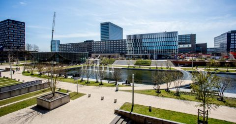 Erasmus University Holland Scholarship 2020 in Netherlands