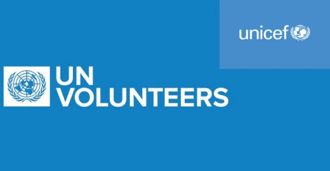 UNV: Data visualization / Production of infographics on the methodologies and results of UNICEF Evaluations