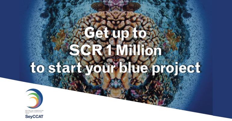 Blue Grants Fund 2020