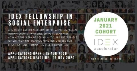 Call for Application: IDEX Virtual Fellowship Program January 2021 Cohort