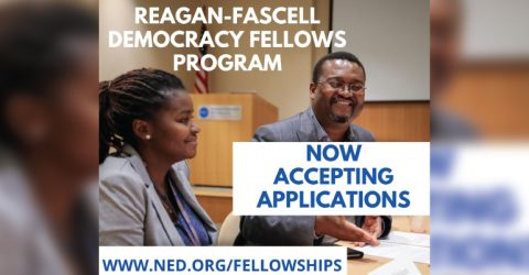 Reagan-Fascell Democracy Fellowships Program 2020-21 in United States