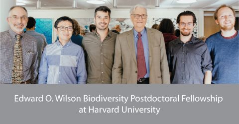 Edward O. Wilson Biodiversity Postdoctoral Fellowship 2020 at Harvard University