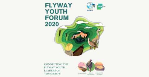 Apply for Virtual Workshop- Flyway Youth Forum 2020
