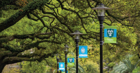 Interfolio Post Doc Fellowship 2021 at Tulane University