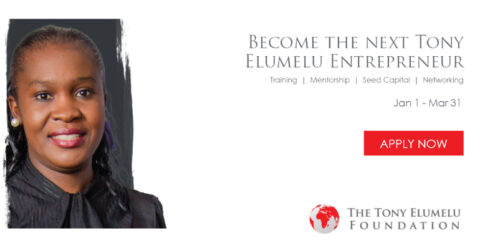 Tony Elumelu Foundation 2021 TEF Entrepreneurship Programme